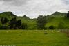 NZE_1263