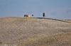 Toscana2010-601
