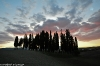 Toscana2010-658